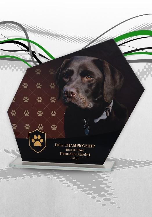 Glaspokale Hundesport Color Look Pokale Hunde